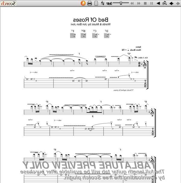 Bon Jovi Scars On This Guitar Song Lyrics: Bed Of Roses Photo