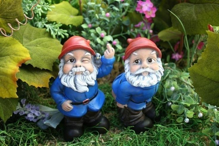 Gnome Garden: Rude Garden Gnomes Photos