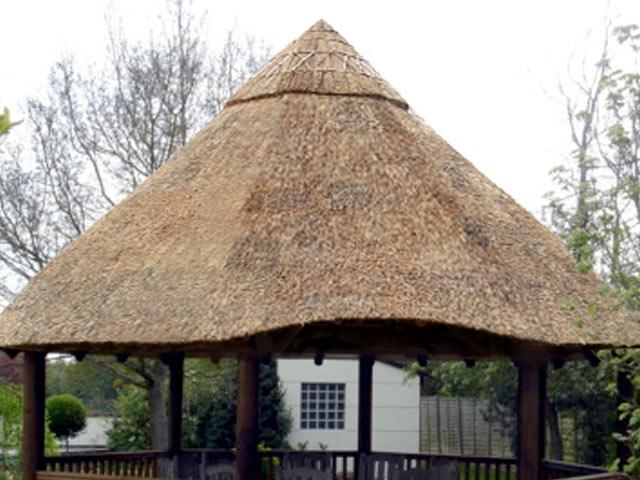 Thatch Roof Photo
