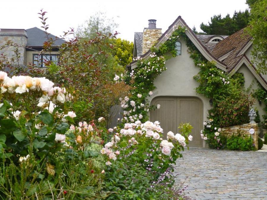 Photos Of Beautiful English Rose Gardens