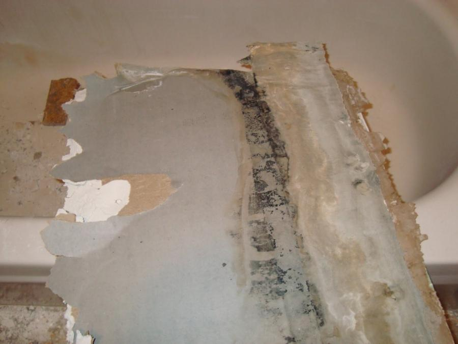 how to clean black mold from drywall