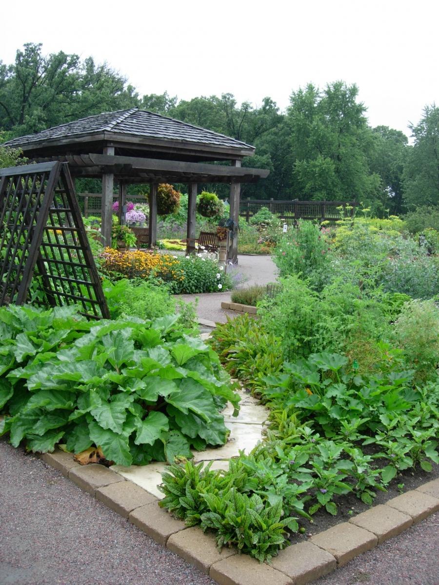 Kitchen garden designs photos for Kitchen garden designs