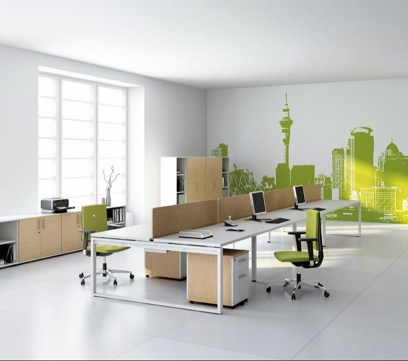 Photos decoration de bureau for Bureau professionnel design