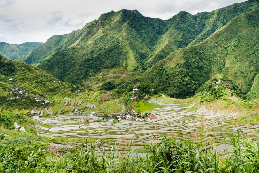 essay about the banaue rice terraces