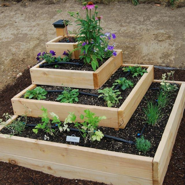 Vegetable Garden Design Ideas: Unique Vegetable Garden Photos
