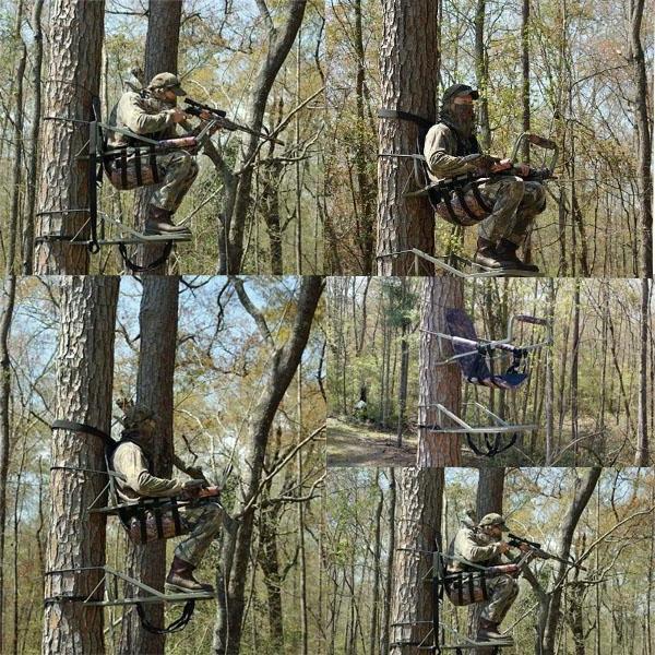 Tree Deer Blind Photos