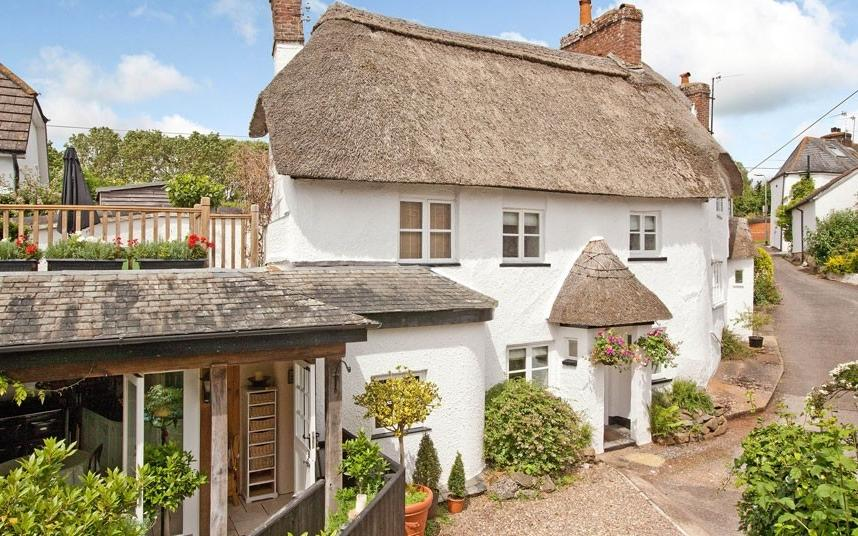 Fairytale thatched cottages for sale