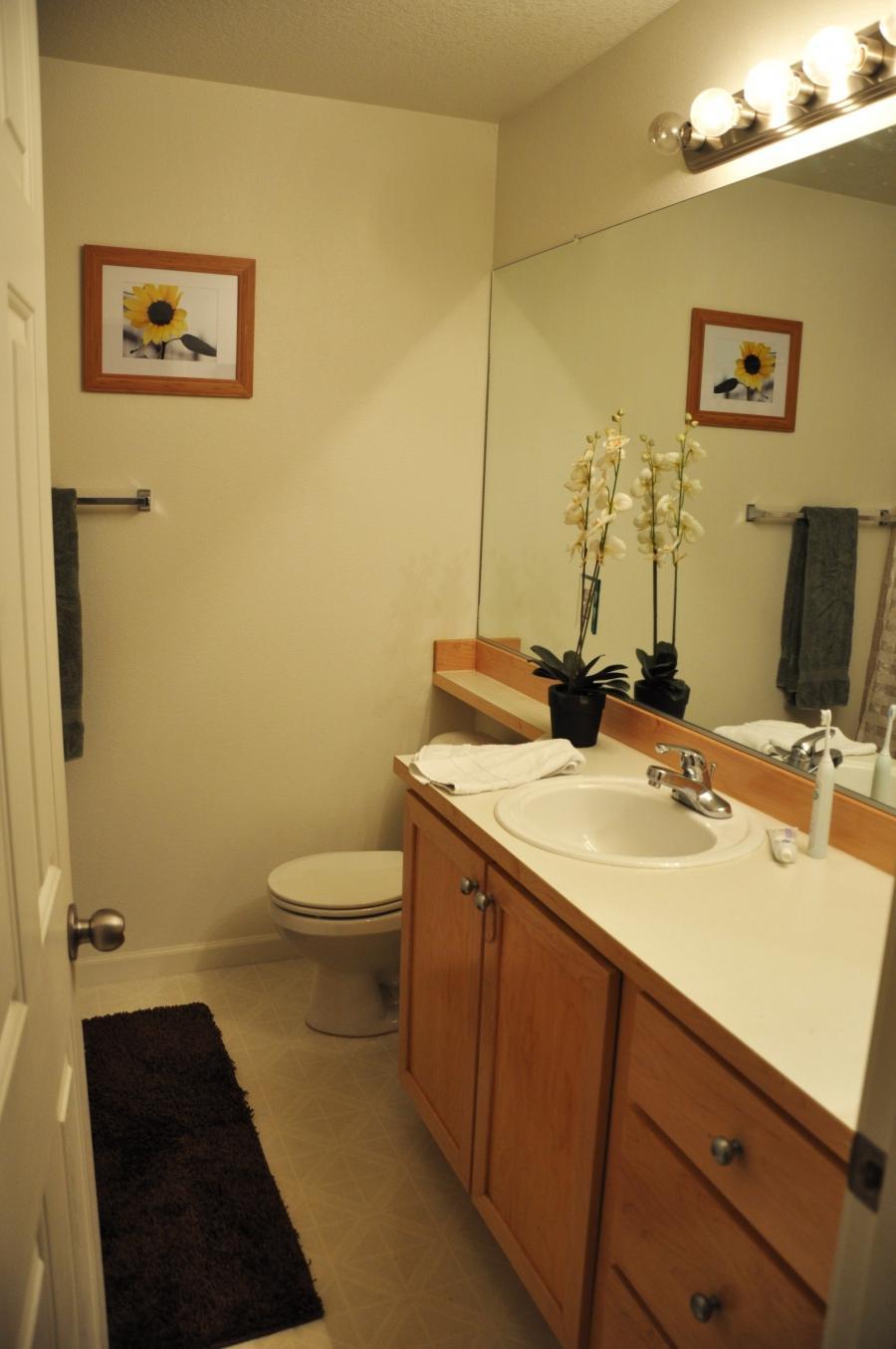 Redo my bathroom photos