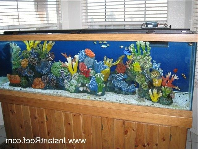 ... salt water fish tank ...