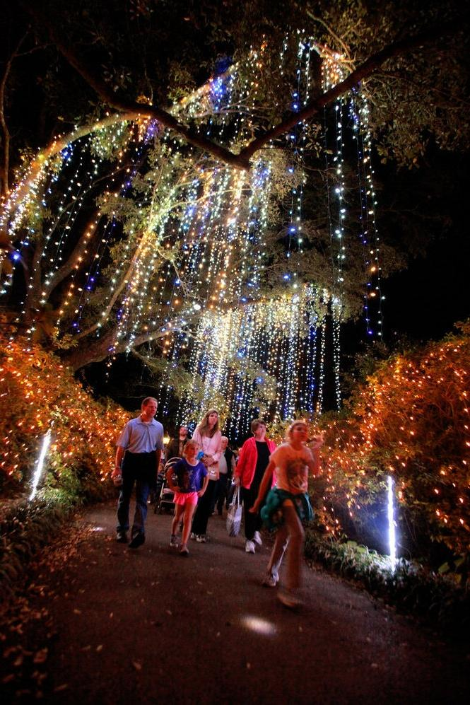 Photos Of Bellingrath Gardens At Christmas