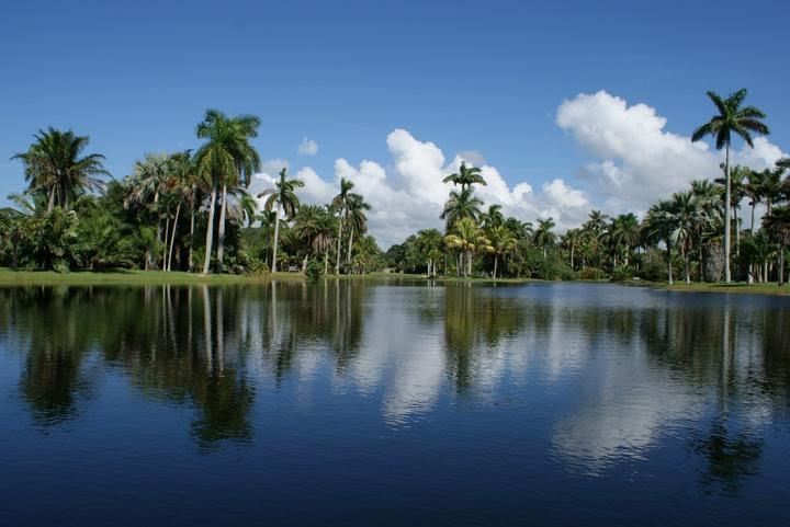 Fairchild Tropical Garden Photos