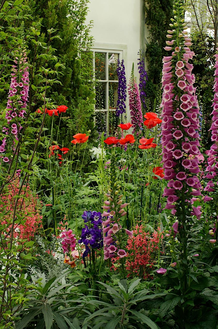 English Cottage Garden Flowers