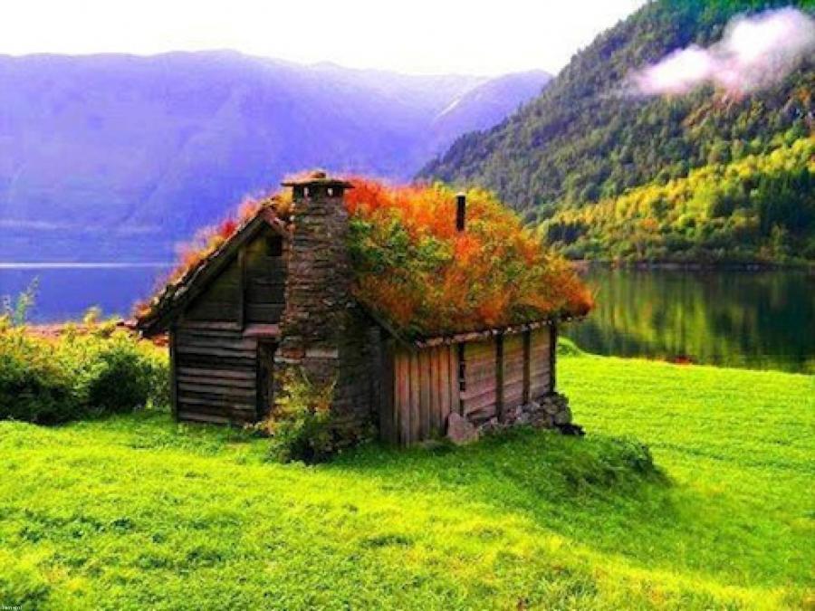 Norway Cottage Photos