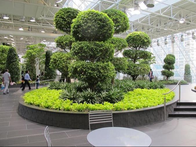 Calgary gardens photos for Landscape design calgary
