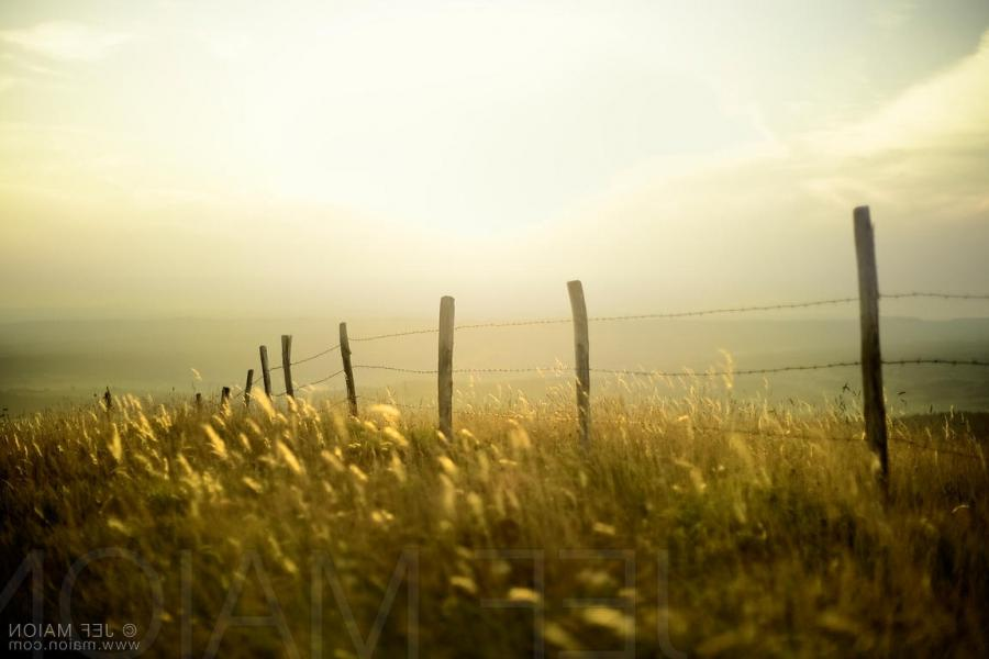 Fence in beautiful evening landscape