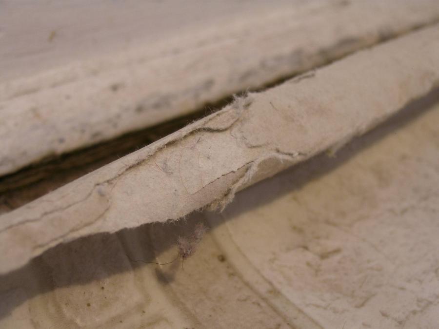 Asbestos linoleum flooring photos for Can you seal vinyl flooring