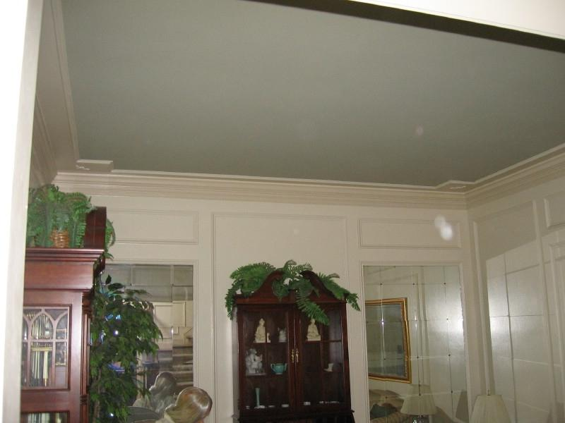 Types Of Tray Ceilings: Photos Of Trey Ceiling Designs