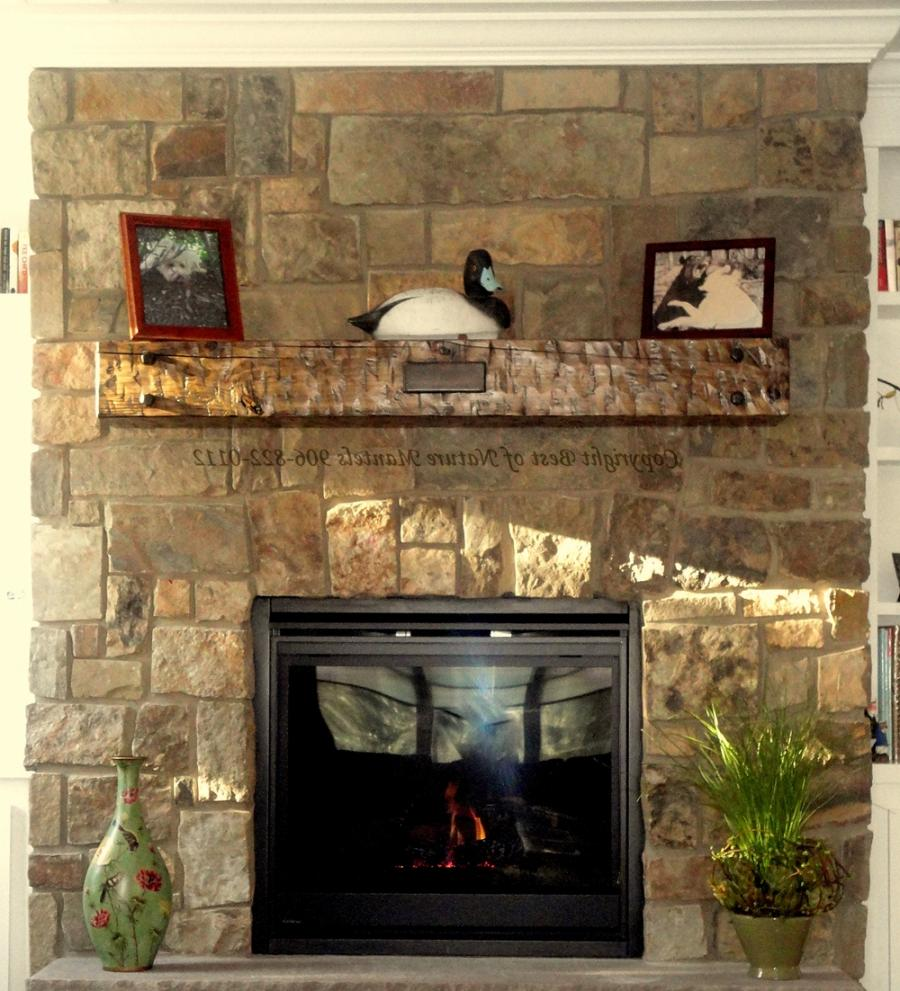 Antique fireplace mantel photos for Fireplace mantel shelf designs