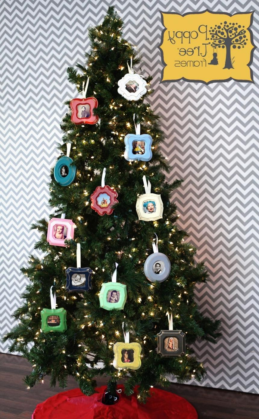 Our ornaments make awesome holiday decorations and gifts! To make...
