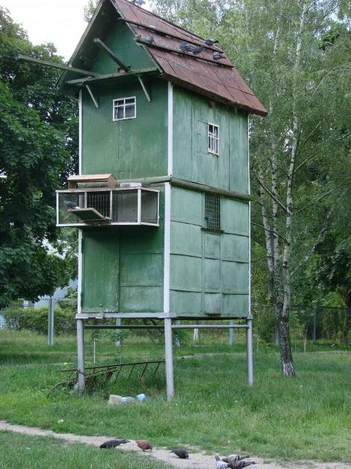Pigeon house plans and photos How to build a dovecote free plans