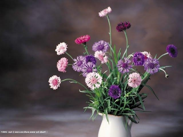 Flower Arrangement, Floral Art Photography ?Flowers in vase,...