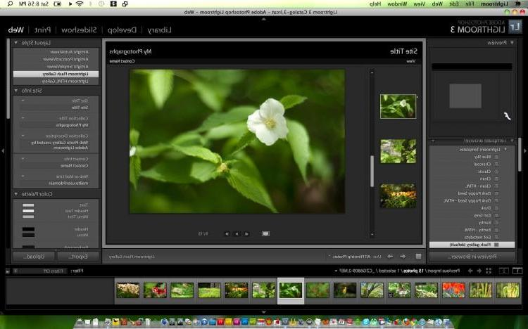 Here are 4 free alternatives to Photoshop for all your editing needs