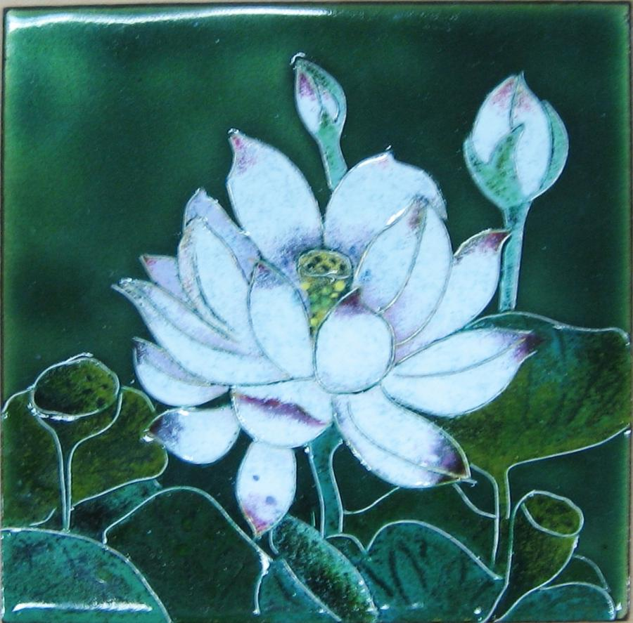Lotus Flower Photos For Sale
