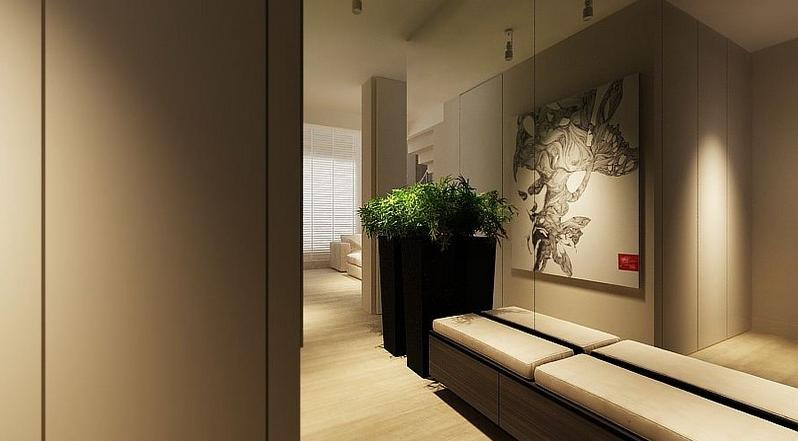 Living Room Designs, Minimalist Room Hallway Design: Awesome...