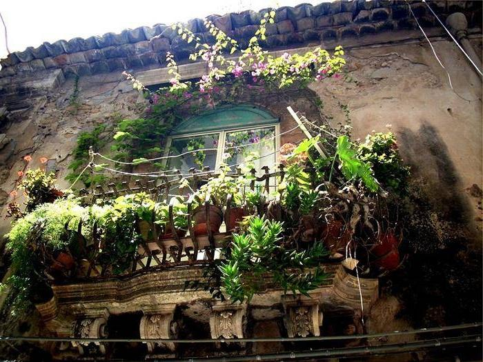 Photos of balcony gardens for Kerala garden designs