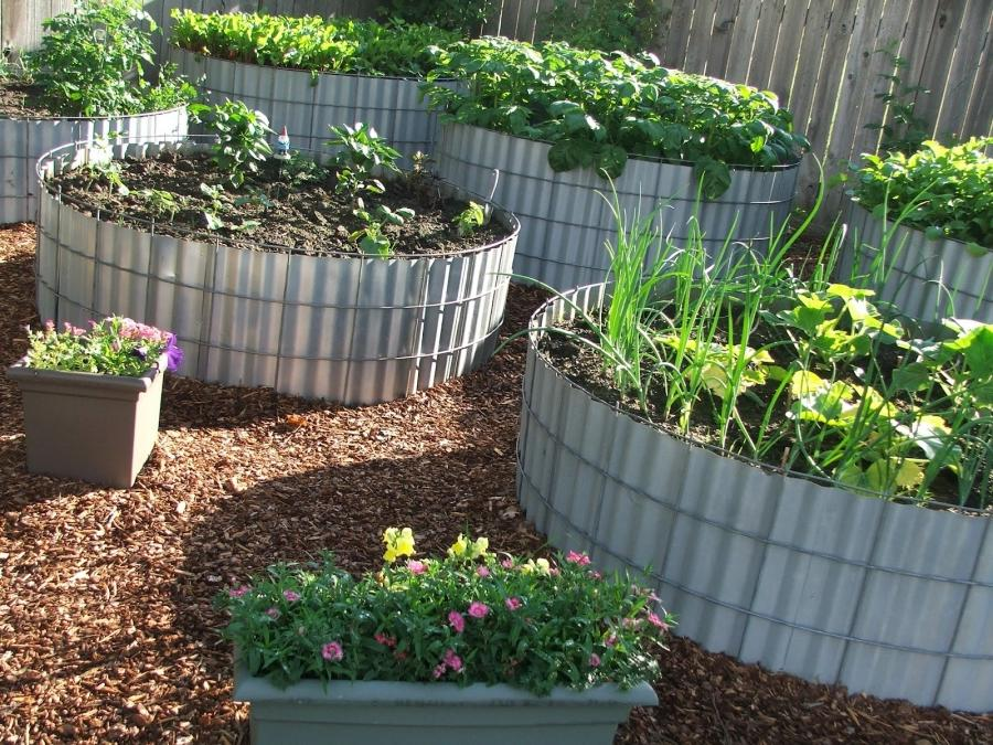 Raised Garden Beds Photos
