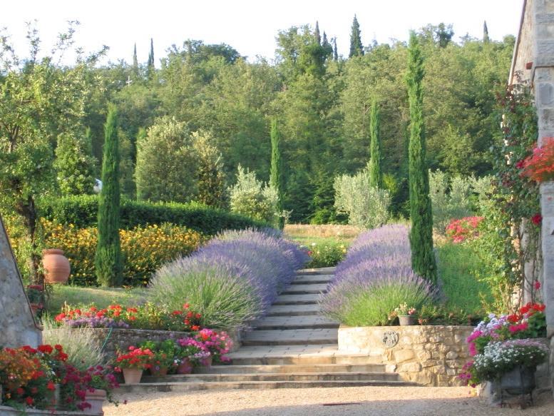 Photos of tuscan gardens
