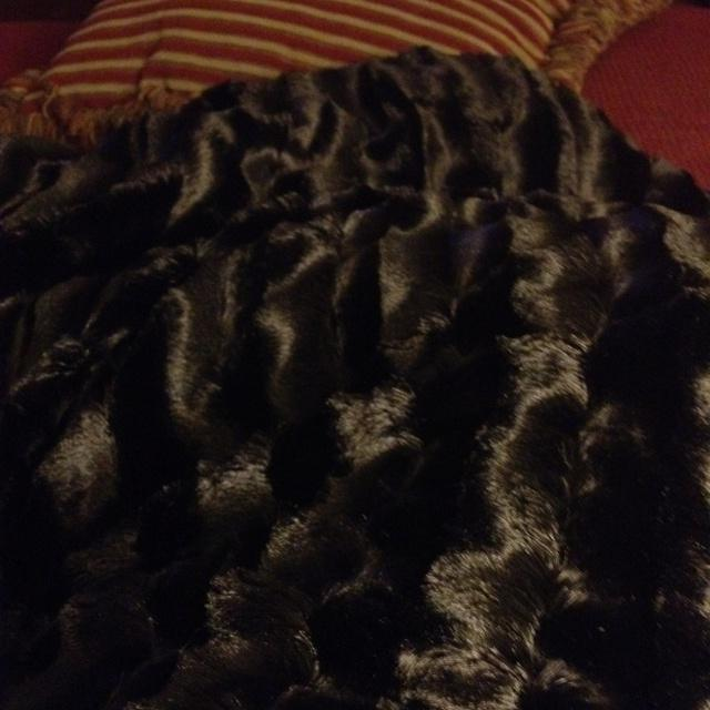 Calvin Klein Jardin Bedding: Photo Blankets Costco