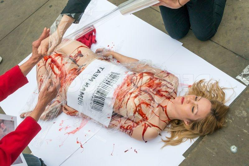 Slaughter Houses Photos