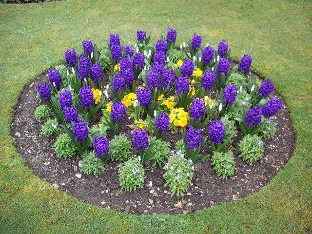 Round Flower Bed : Photos round flower bed