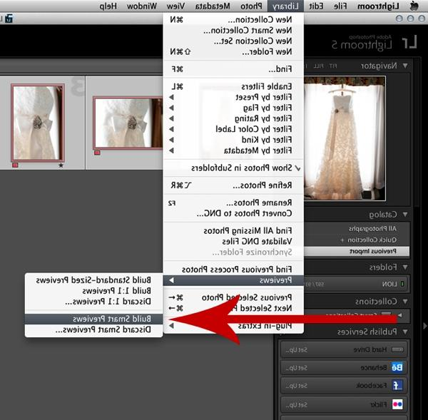 Once the smart previews have finished rendering, close Lightroom...