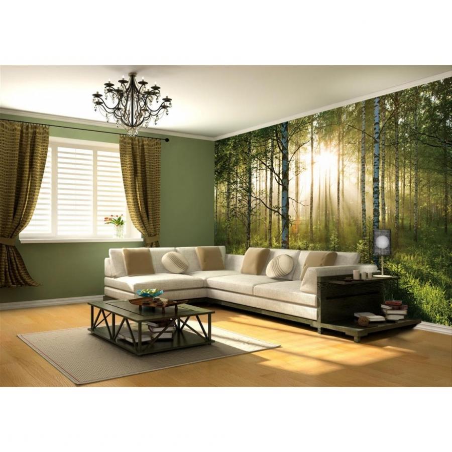 Photo mural wallpaper for 1wall forest wallpaper mural