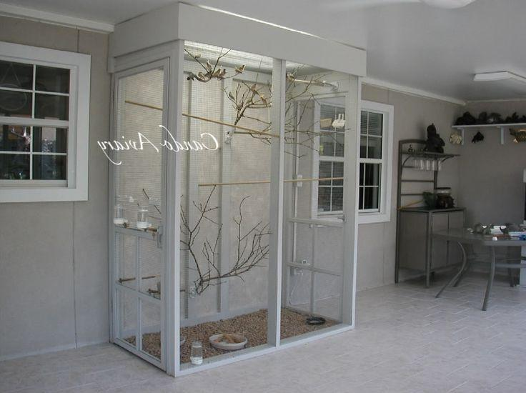 Indoor aviary, would do another molding at the bottom for no...