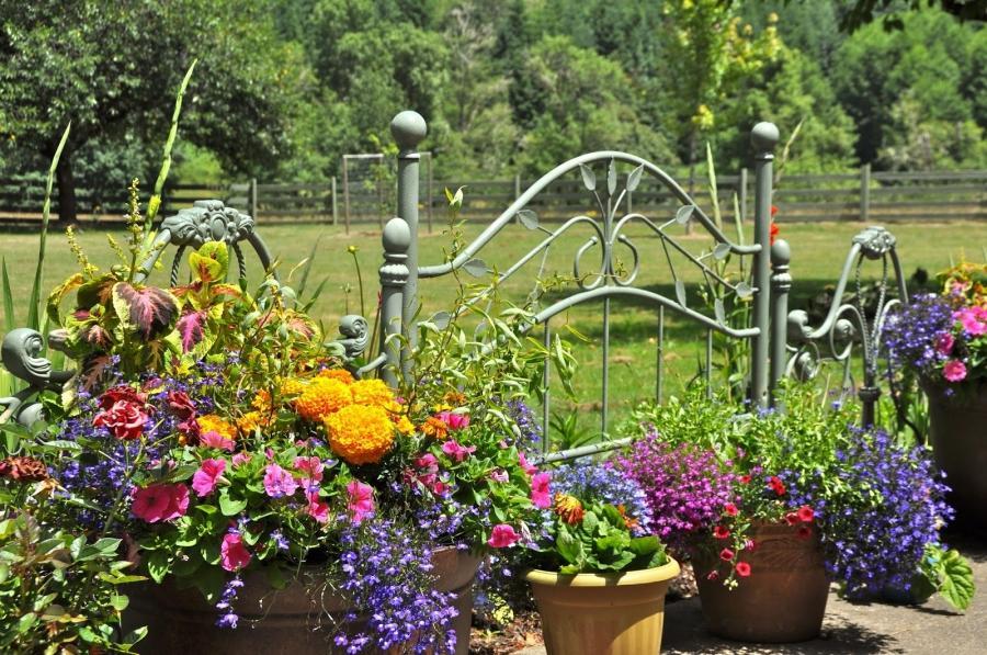 Flower garden landscape photos for Flower bed shapes designs