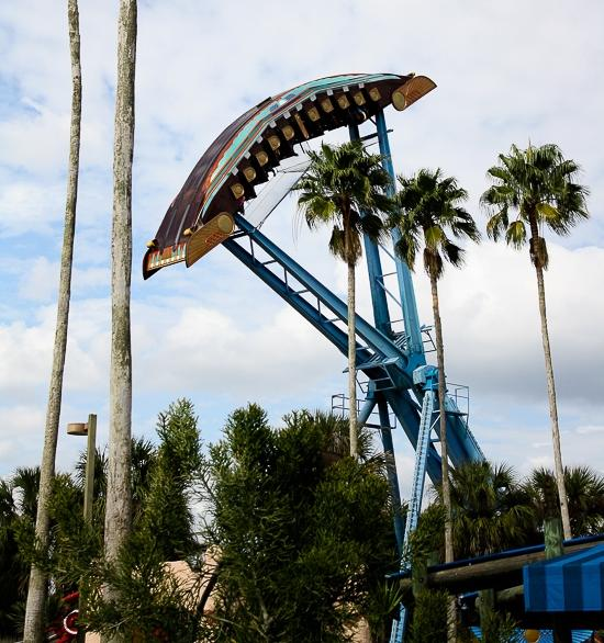 Busch garden photo tampa