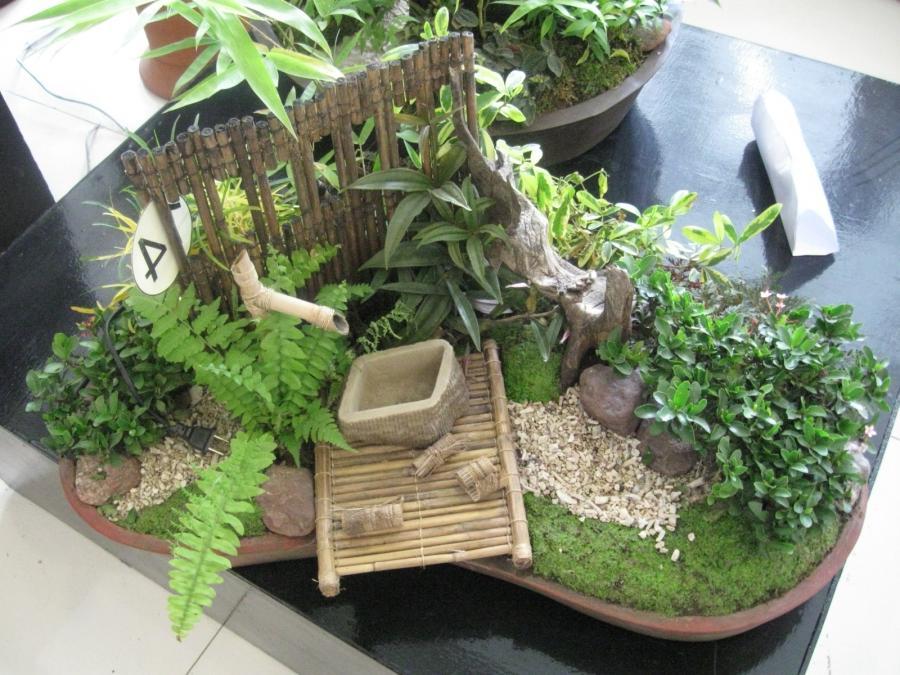 Photos of dish garden for Succulent dish garden designs