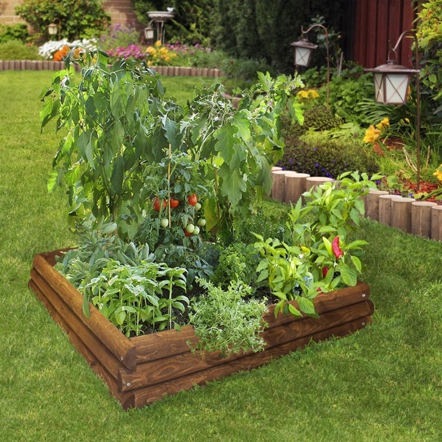 Photos of raised bed vegetable garden for Raised vegetable garden