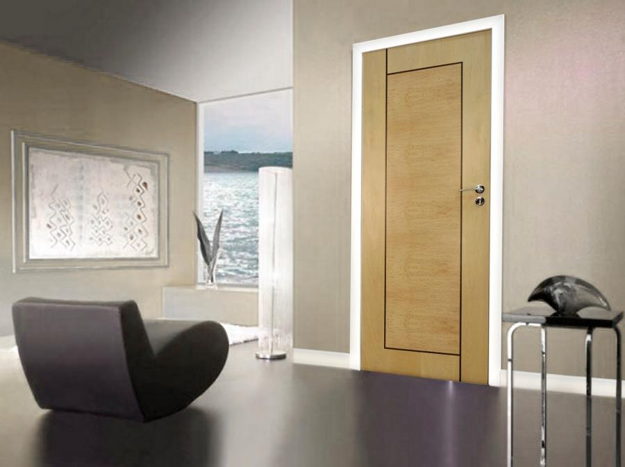 Designer doors and modern interiors