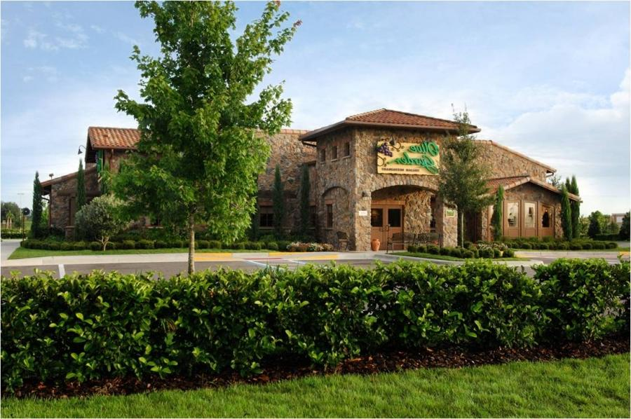 Olive garden restaurant photos