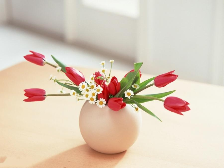 Flower Art Photography, Red and White Flowers in Egg Pot, Inside...