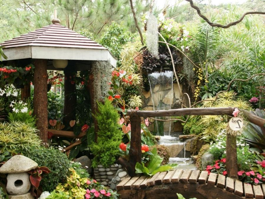 Tropical gardens photos for Decoration jardin tropical