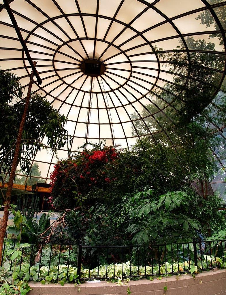 Repile Garden Photos