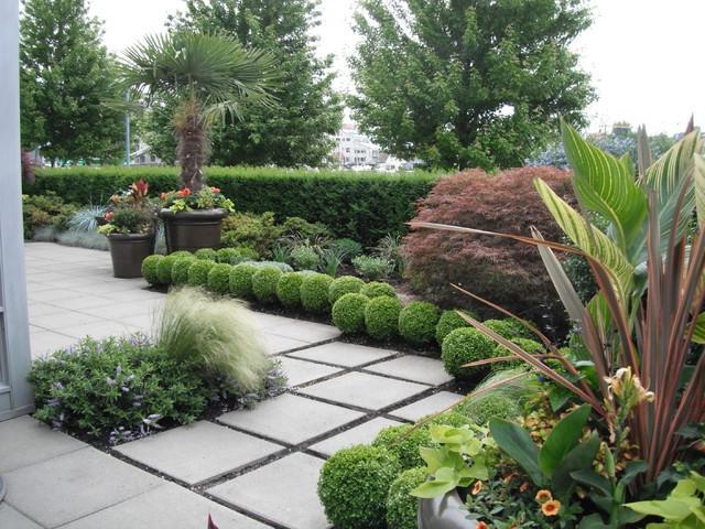 tropical garden landscaping photos