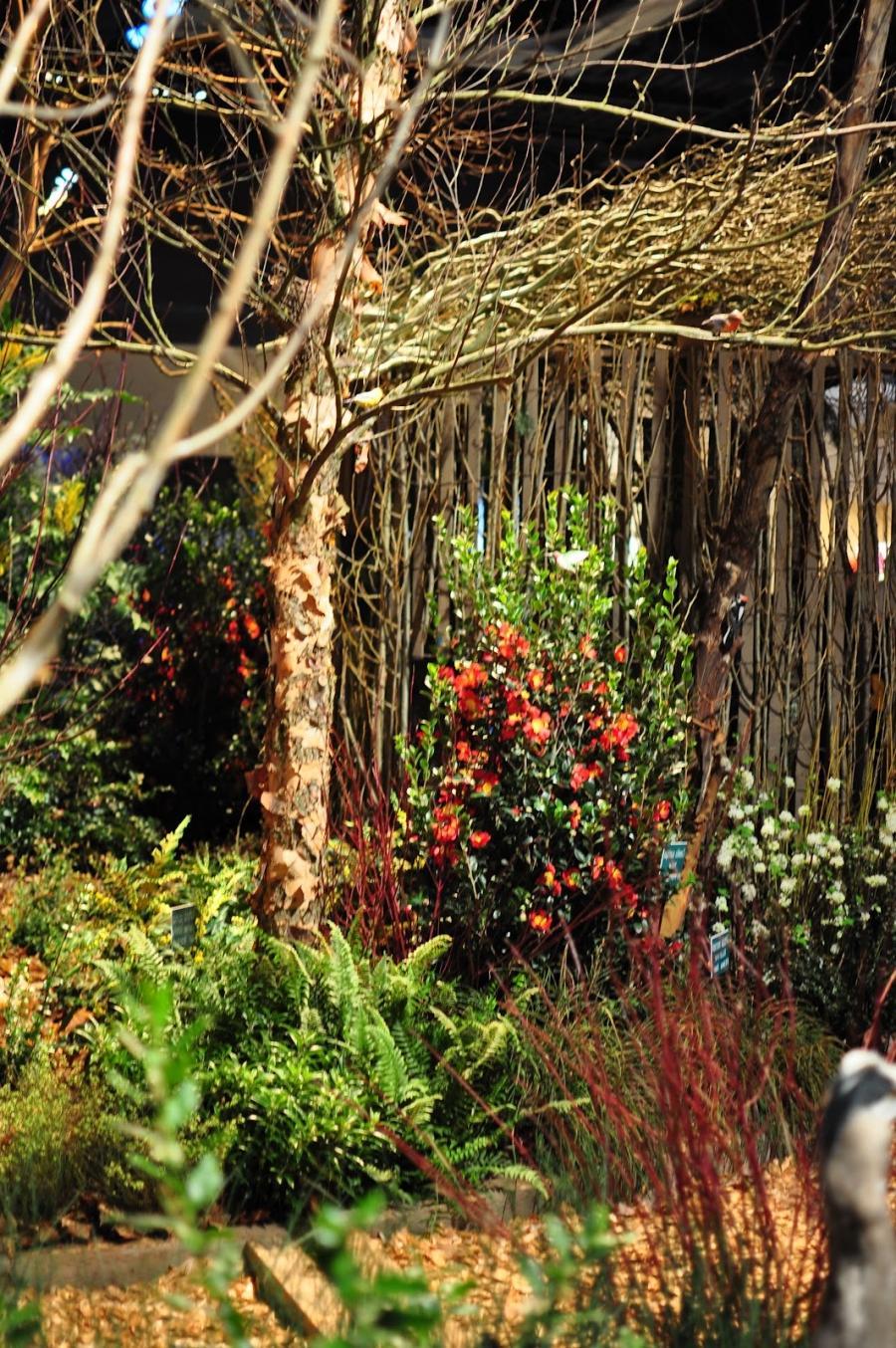Nw gardens photos