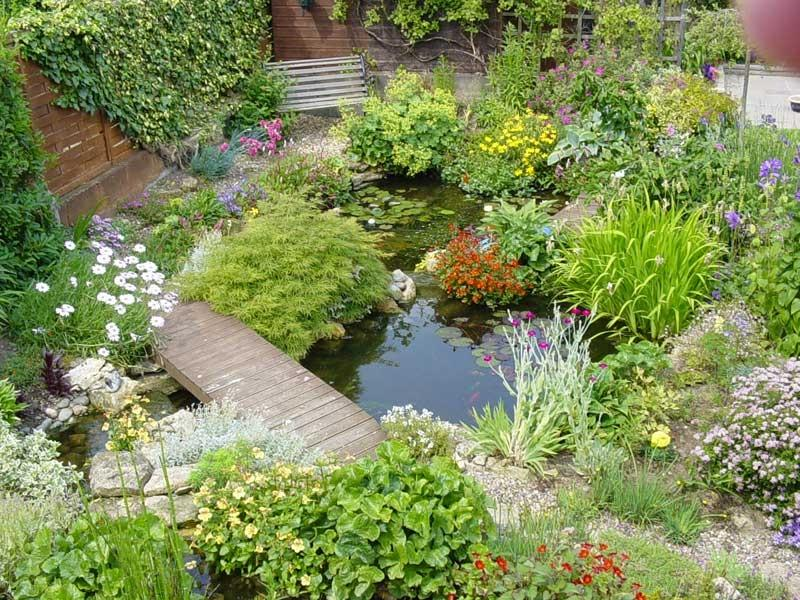 above ground water garden photos