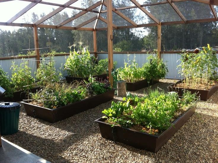 Enclosed Vegetable Garden Photos